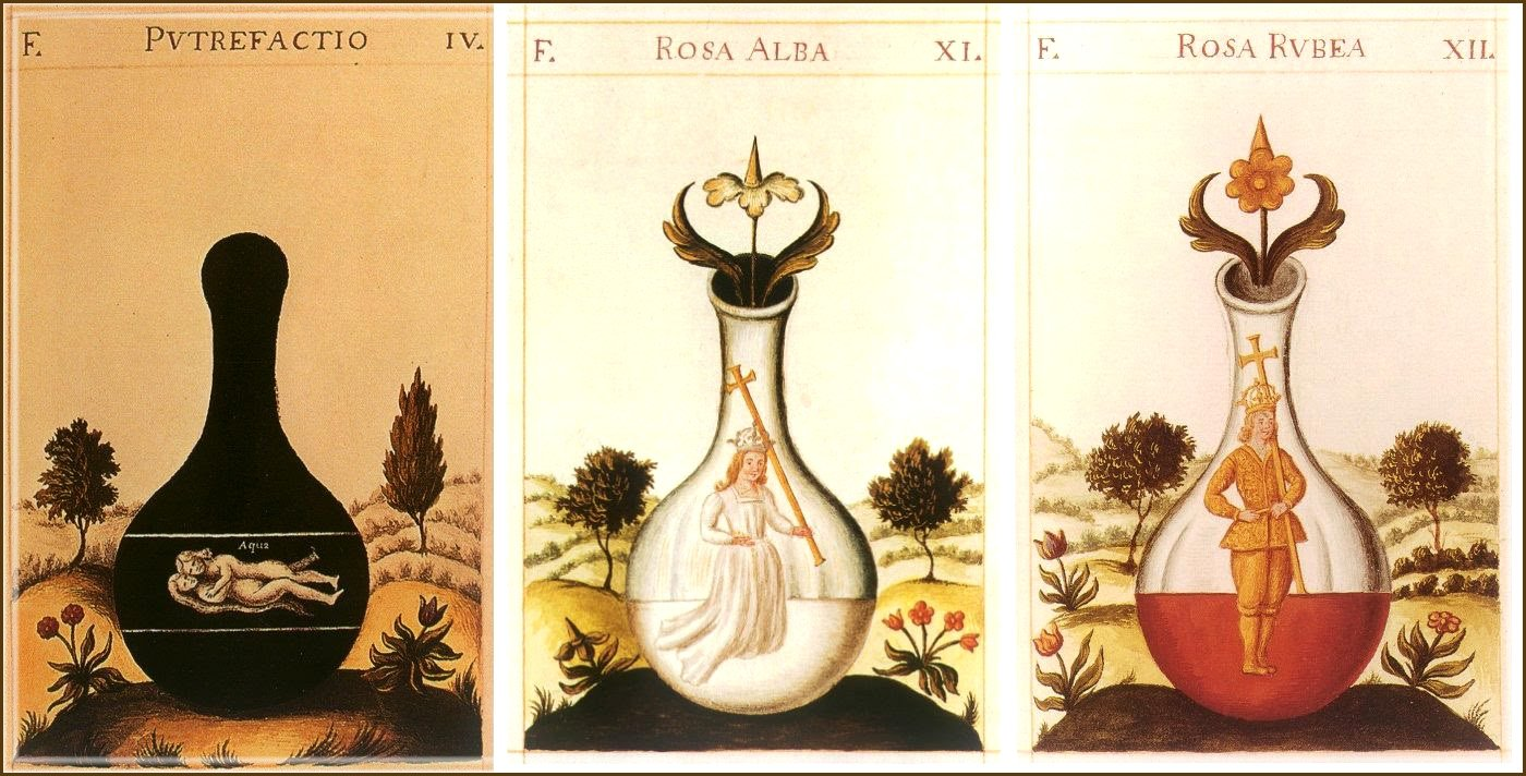 The three alchemical stages: Nigredo, Albedo and Rubedo