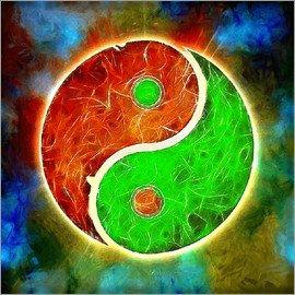 poster-yin-yang-fusion-414648