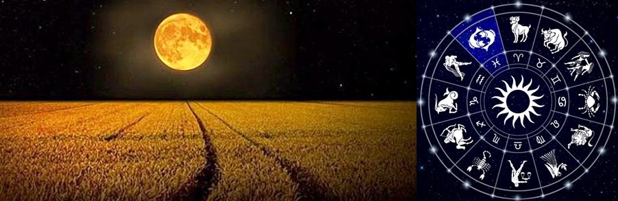 The Corn Full Moon: A Journey into the Depth of the Self